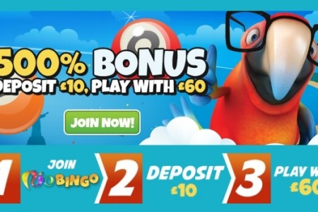 £50 Welcome Bonus with Rio Bingo