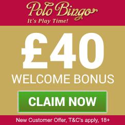 Polo Bingo Free Bonus Box 5 Starbingo