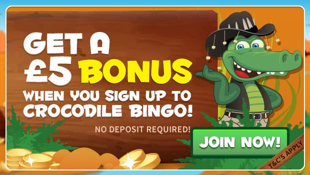 free online bingo games with no deposit bonus