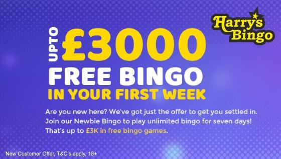 Harrys Bingo | Free Bingo Week | No Deposit Bingo
