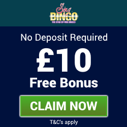 bingo bonus no deposit needed