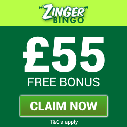 ZingerBingo | Free Bingo Bonus and Free Spins